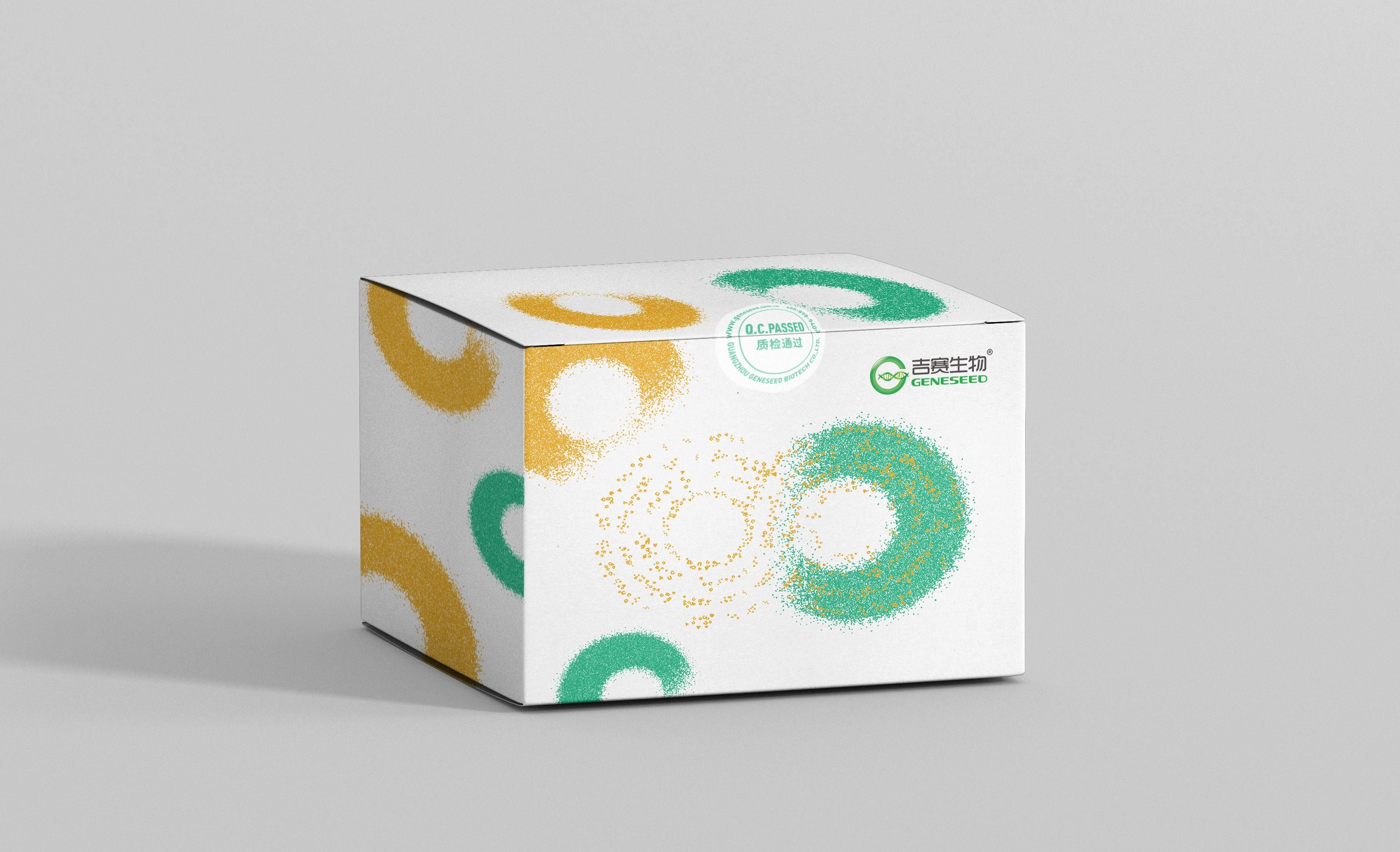 RNA pull-down试剂盒