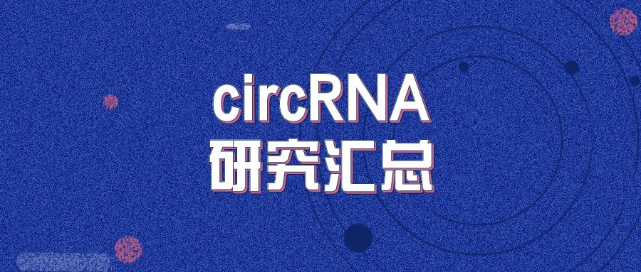 circRNA研究汇总 | 20210510-20210516